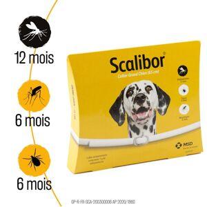 Scalibor 2x Scalibor® 48cm Petit/Moyen - Collier antiparasitaire chien