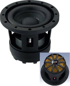 Carpower RAPTOR-6 Plus d'excuse ! - Subwoofers Hi-Fi automobile