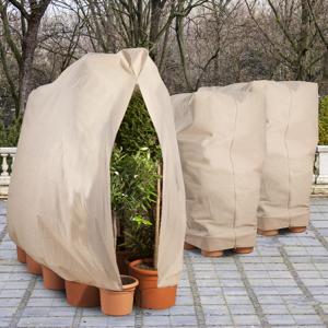 IDMarket Housses d'hivernage pour plantes 80x160cm